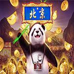 Lucky Panda Beijing